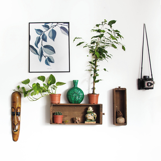 📷🌱🎨⁣ Indoor vibes⁣ ⁣ ⁣ #andmeunlimited #madewithlove #AW2021 #ootdinspiration #lifestyle #nature #decor